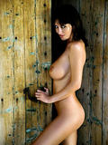 http://img270.imagevenue.com/loc59/th_43448_071127_121809_sophie_howard_super_gallery_071_123_59lo.jpg
